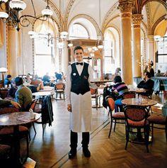 Vienna coffeehouse. Vienna, Austria