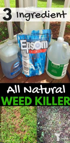Ingredient Natural Weed Killer – Homemade Weed Killer Recipe This Natural weed killer saved my 5 acres AND my health, plus it's cheaper than round up!This Natural weed killer saved my 5 acres AND my health, plus it's cheaper than round up! Organic Gardening, Gardening Tips, Urban Gardening, Vegetable Gardening, Gardening Services, Container Gardening, Pasto Natural, Weed Killer Homemade, Homemade Weed Killers