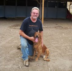 Get Ours Best Service Dogs Trainers who gives Better Services at Dog Wish