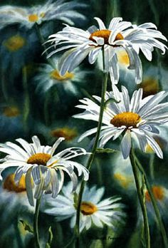 "Sharon Freeman watercolor - ""Daisy Display"""