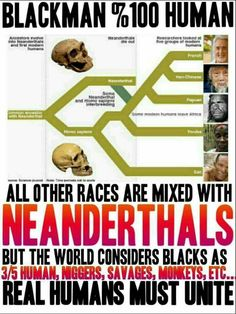 I'm 100% African and Proud of It, Neanderthal, Khoisan, Xhosa, European,  Asian,  Eurasia, Africa