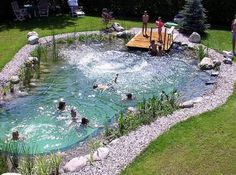 A Natural Swimming Pool Is The Best Thing You Can Add To Your Garden