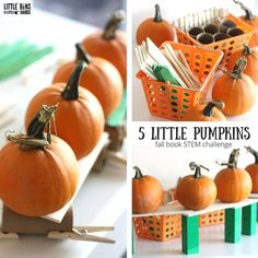 Five Little Pumpkins Stem Challenge For Kids Little Bins - The Book Five Little Pumpkins Is A Classic Halloween Or Pumpkin Themed Staple For The Fall Season Our Five Little Pumpkins Stem Challenge Is Perfect To Pair With It Too Whether You Are Passed Coun Pumpkin Books, Pumpkin Stem, Autumn Activities, Stem Activities, Kindergarten Stem, Kindergarten Routines, Five Little Pumpkins, Fall Preschool, Stem Preschool
