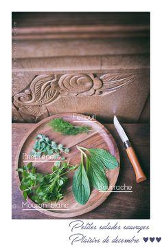 Salade sauvage de décembre : récolte de petites plantes sauvages mi décembre !!! Que trouver au jardin, ou en pleine nature ? Plants, Edible Wild Plants, Salad, Kitchens, Plant, Planets