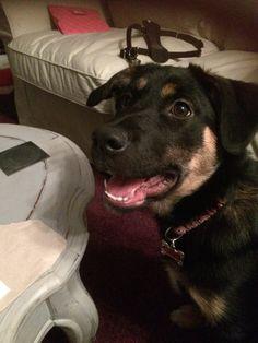 Lucy smiles! November 2014.