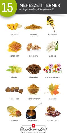 Healthy Lifestyle, Protein, Medical, Therapy, Honey, Bees, Medicine, Healthy Living, Med School