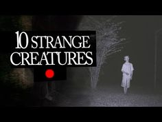 10 Mysterious and Strange Creatures Caught on Tape - YouTube