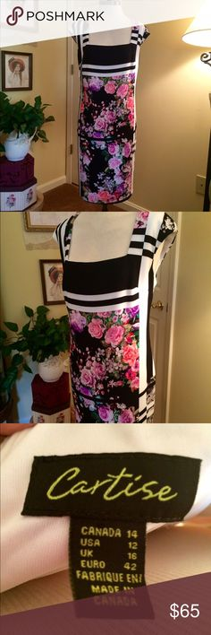 Beautiful Cartise Dress  This is an amazing dress by Cartise. Size 12. Sheath style with side zipper. Above knee length. Crepe type fabric is fully lined. Black and cream with amazing floral colors in pinks and lilac. Worn once. Cartise Dresses Midi