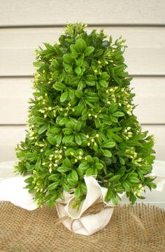Mini Boxwood Christmas Tree. $37.00, via Etsy.
