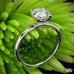 The ring is perfectly simple and I love the single diamond! I don't need it to be that big but it is gorgeous!!