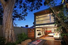 big-tree rear-garden modern house extension