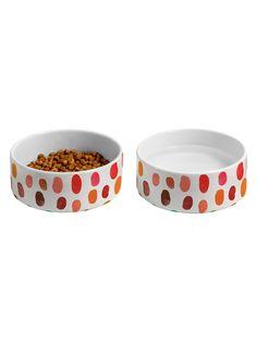 DENY Designs Fava 2 Pet Bowls (Set of 2)