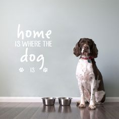 Home Is Where The Dog Is Pet Quote Vinyl Wall Decal 7.64 Follow us for the Latest and Trending items for Dog Lovers ❤ FREE Shipping worldwide ✈ #doglovers #petlovers #doggroomers #dogbreeds #doglovergifts #petowners #pawprint #pawsome #dogmom #dog #dogs #doglover #doglife #doggy #doglove #puppies #doggie #doggies #dogprints