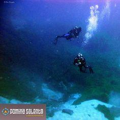 Immersioni zona Grotta della Cattedrale #orcadivingcenter #torrechianca #portocesareo #salento #diving #igerslecce #summer #sun #puglia #pugliagram #instapuglia #instasummer #catturailsalento #welcometosalento #summerinsalento #dominasalento