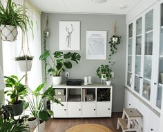 Give room to nature and brighten up your living room, kitchen, terrace, balcony or any other place with plants. Decor, Living Room, Room, Living Room Colors, Home Decor, Rustic Living Room, White Rooms, Home And Living, Buffet Decor