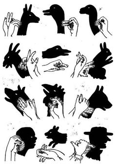 Shadow Art, Shadow Play, Diy Arts And Crafts, Fun Crafts, Shadow Puppets With Hands, Whimsical Nursery, Nursery Art, Nursery Decor, Hand Shadows