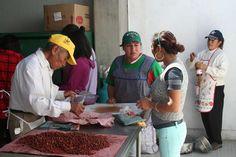 DIF municipal de Tlaxcala realiza cursos de capacitación en Atlahapa                  * Agradecen mujeres la capacitación que les permite contribuir al gasto familiar.