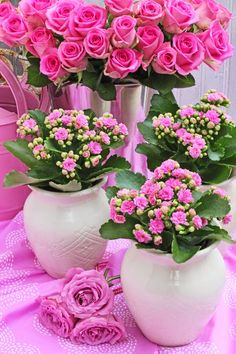 FLOWERS by ingrid and titti-Happy Valentine's Day!-Ingrid Henningsson-Of Spring and Summer Beautiful Rose Flowers, Flowers Gif, Fresh Flowers, Beautiful Flowers, Simple Flowers, Pink Roses, Pink Flowers, Floral Arrangements, Summer