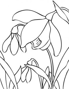 flower Page Printable Coloring Sheets   Flower Coloring Pages : Free Coloring Pages, Printable Coloring Pages ...