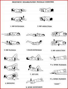 lower back physical therapy exercises pdf