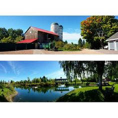 Visited Belcroft Estates recently. It's a good problem to have when you possess too many great photographs to select from for sharing. Absolutely beautiful!😍 · #nofilter #barn #dreamy #belcroftestates #innisfil #panorama #samsungs4 ·