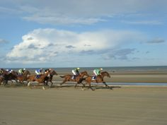 'Laytown Strand Races' only beach races run under jockey club rules in the Northern hemisphere! Cottages Ireland, Luxury Holiday Cottages, Photo Competition, Luxury Holidays, Racing, Horses, Club, Beach, Animals