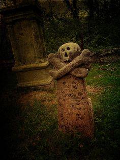 DSCN3916 Forgotten graves by pinktigger, via Flickr