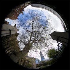 """""""Southwark Cathedral"""" captured by Aurelien Guichard using a EF 8-15mm f/4L Fisheye USM."""