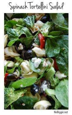 Spinach Tortellini Salad | recipe on NoBiggie.net | This salad is great for BBQs, picnics and big family gatherings.
