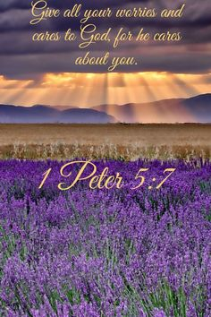 1 Peter 5-7 NLT  Learn Spanish http://learnspanishthroughbible.blogspot.com  Try it, practice it and spread the Word of God.