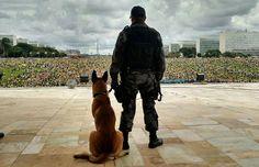 Twitter Essa foto da manifestação em Brasília ficou linda.