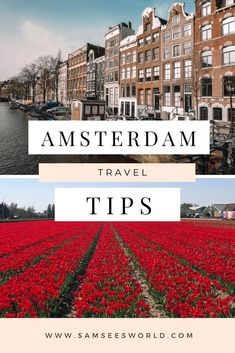 Everything you need to know before visiting Amsterdam. Here are the top Amsterdam Travel Tips for you to know before visiting Amsterdam. Find out how to explore and Travel Amsterdam in the best way possible! #Amsterdam #Netherlands #Travel