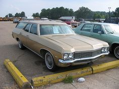 My parents had a gold Chevy Impala station wagon when I was a kid.  The kind with the huge bench seat in front and when the parents were driving, you could jump all around the back!  Seat belts schmeat belts!!!