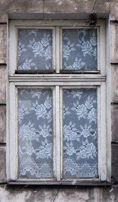 Flowers in the Window, Krakow, Poland
