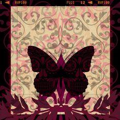 'Papillon Collection'