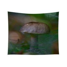 Fallen fungi Tapestry x by Helen Kelly. Our premium tapestries are available in three different sizes and feature incredible artwork on the top surface. Chris Cornell Thank You, Wall Tapestries, Tapestry, Traditional Frames, My Favourite Subject, Forest Floor, Wall Spaces, Basic Colors, How To Be Outgoing