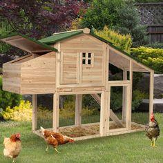 Installez un poulailler chez vous pour des œufs frais et bio chaque jour. #outdoor