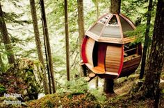 artistic tree house exterior