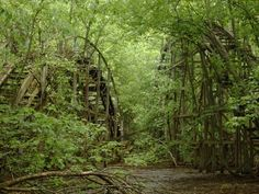 Chippewa Lake roller coaster. Now it's just a shell of what it once was. Beautifully eerie.