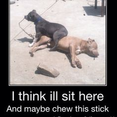 Lazy days. Look at where that pit sit. Get it. Lol