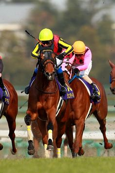 Gentildonna, Love the Races  so exciting!  Kentucky Derby is my Favorite.