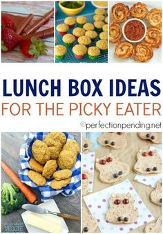 We all know a picky eater or two. It can be very challenging to come up with lunch box ideas for the picky eater, but it's not at all impossible. These healthy lunch box ideas can make packing lunch for your picky eater as simple and quick as any other packed lunch.