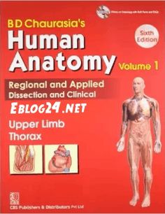 BD chaurasia Human Anatomy Head neck brain, upper limb Thorax, lower limb abdomen PDF