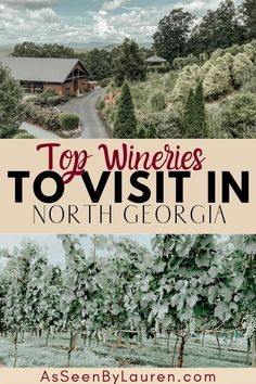 Looking for the best wineries in Georgia and things to do in Georgia? I've got you covered with my favorite wineries in the North Georgia Mountains and things to do while visiting North Georgia. Gainesville Georgia, Dahlonega Georgia, Cool Places To Visit, Places To Travel, Blairsville Georgia, Atlanta Travel, Georgia Okeefe, Mountain Vacations, Georgia Bulldogs