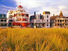 Cape May, NJ. Love all the old Victorian houses there!