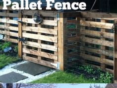 Pallet Fence Ideas to Improve Your Amazing Home Pallet garden - love it! Or use as an enclosure for smaller livestock or pets.Pallet garden - love it! Or use as an enclosure for smaller livestock or pets. Wood Pallet Fence, Diy Fence, Backyard Fences, Wood Pallets, Fence Ideas, Fence Gate, Brick Fence, Cedar Fence, Pallet Gate