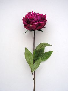 http://www.withycombefair.co.uk/Classic__Fresh_Touch_Cerise_Peony.htm