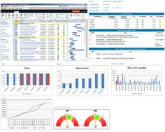 Microsoft Enterprise Project Management Project Reporting dashboard