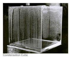 hans haacke- condensation cube Hans Haacke, Condensation Wall,1967.  Hans Haacke - What's the Big Deal?  Condensation Cube, begun 1965, completed 2008; plexiglass and water; Hirshhorn Museum and Sculpture Garden.