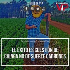 Exacto.! ____________________ #teamcorridosvip #corridosvip #quotes #frasesvip